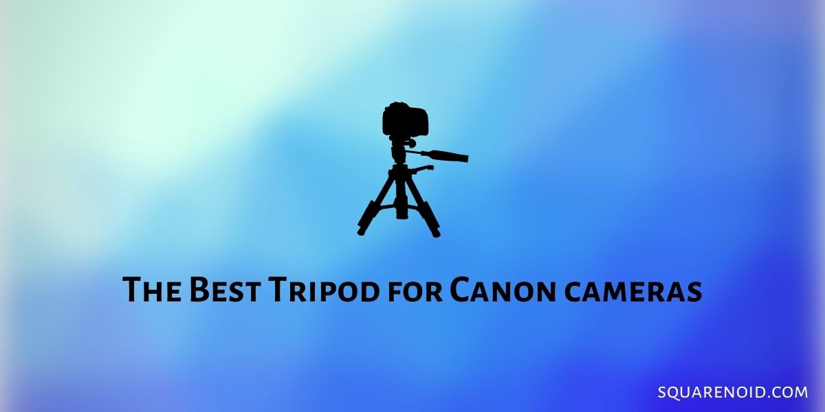 The Best Tripod for Canon cameras